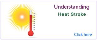 PPT on Heat Stroke
